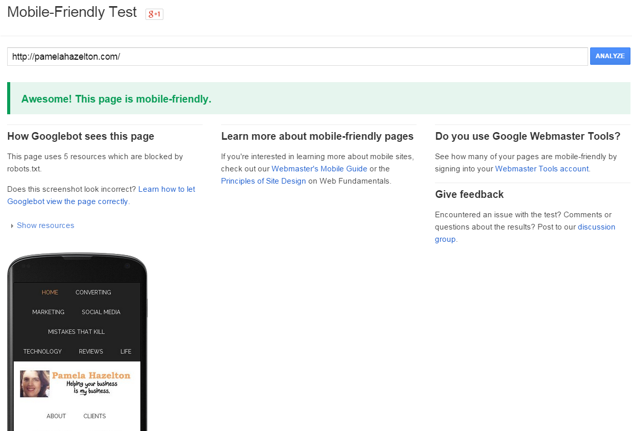 Screenshot - Google says this site is mobile friendly