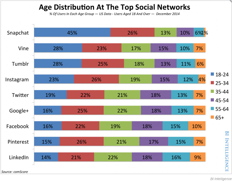 Social Network Demographics Chart by BI Intelligence
