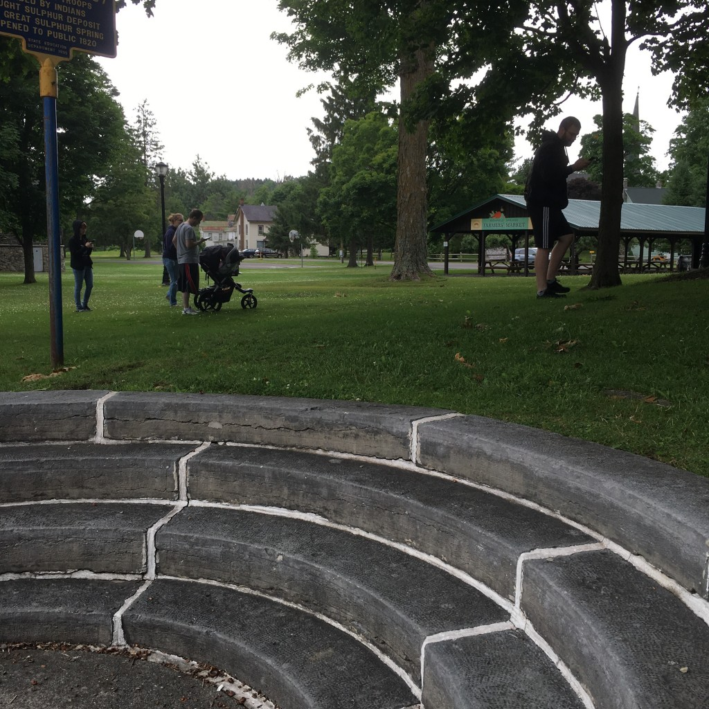 Group of Pokemon Go players in the park.