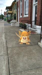 Screenshot of a Raticate Pokemon on the sidewalk.